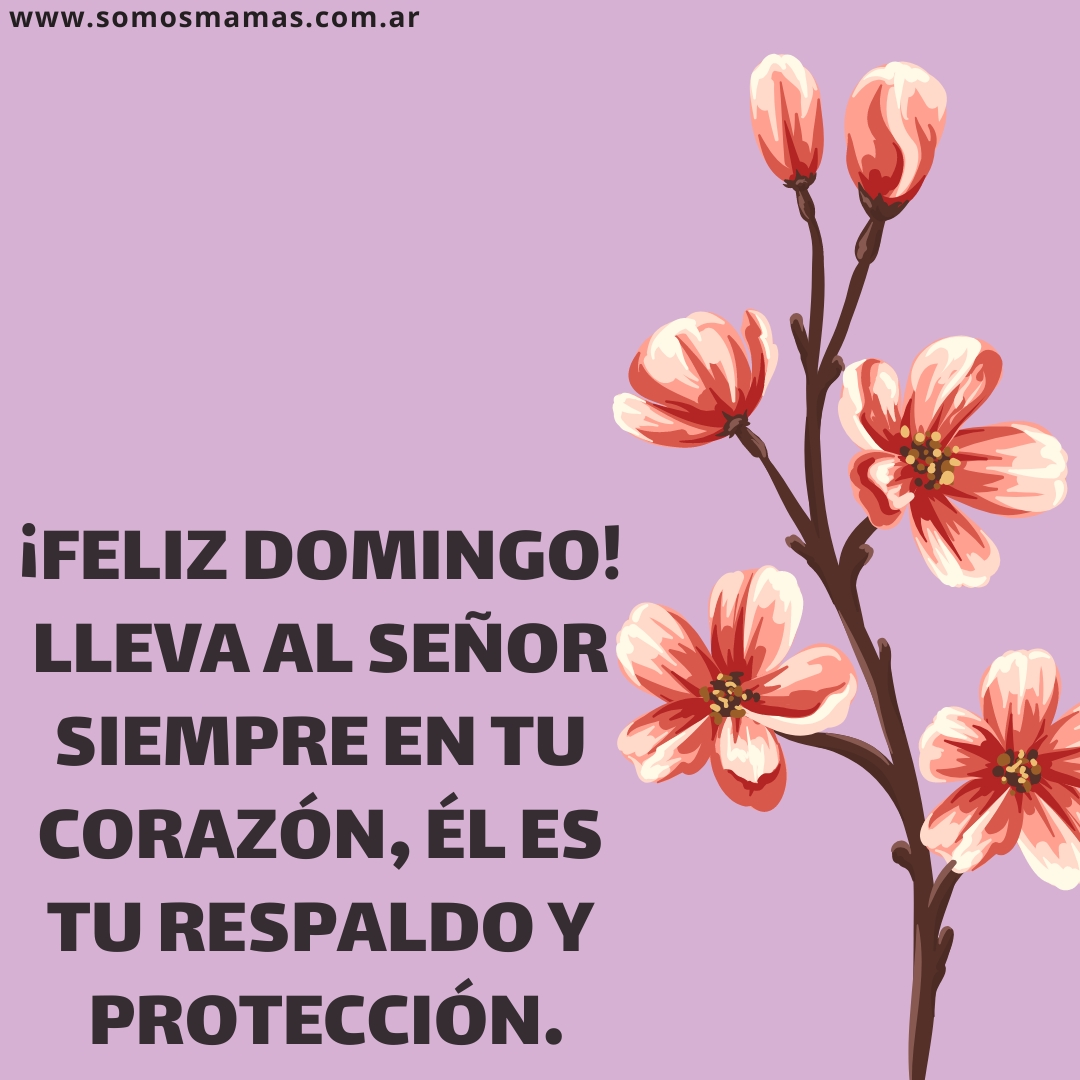Feliz domingo de bendiciones